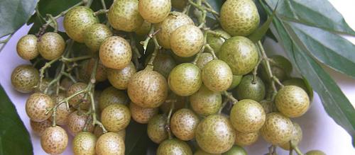 Món ngon thơm mùi mắc mật đặc trưng ở Lạng Sơn