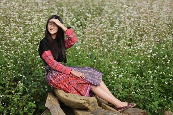 Du lịch Mộc Châu ngắm hoa tam giác mạch nở rộ
