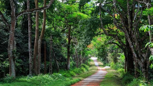 9 điểm đến tuyệt đẹp bạn phải check-in khi du lịch Ninh Bình