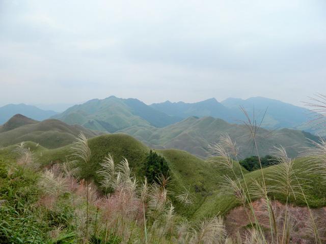 """Có một """"Sa Pa thu nhỏ"""" ở miền biên ải Quảng Ninh"""