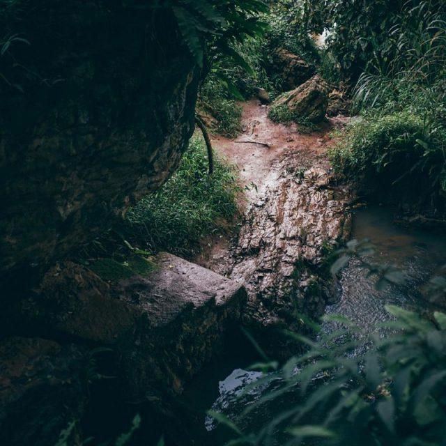 """""""Chinh phục"""" Thác Voi hoang sơ huyền bí giữa núi rừng Đà Lạt"""