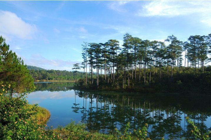 Chia sẻ kinh nghiệm du lịch Đà Lạt tự túc